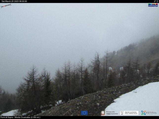 Webcam LIVE di Forni di Sopra